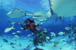 Scuba Diving in Ambergris Caye